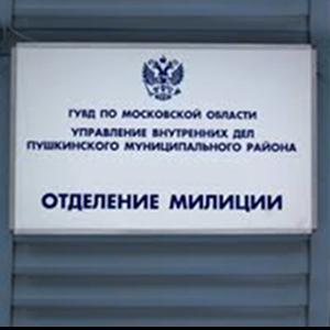 Отделения полиции Вяземского